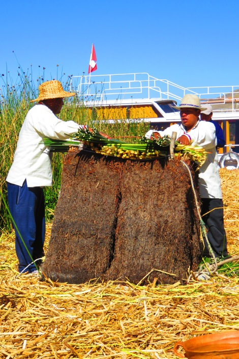 We got a little lesson on how the islands are constructed. Take the reeds (still attached to the soil) and tie is closely to another so that the roots eventually intertwine. One secure, lay down layers and layers of cut reeds. Next build up a playform for the one room house. Build house! Re-lay reeds 2 or 3 times a month as necessary,