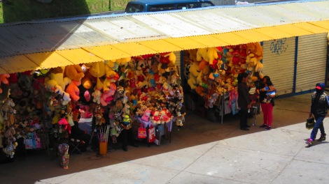 There is a street for everything in La Paz. This was Stuffed Animal Avenue.